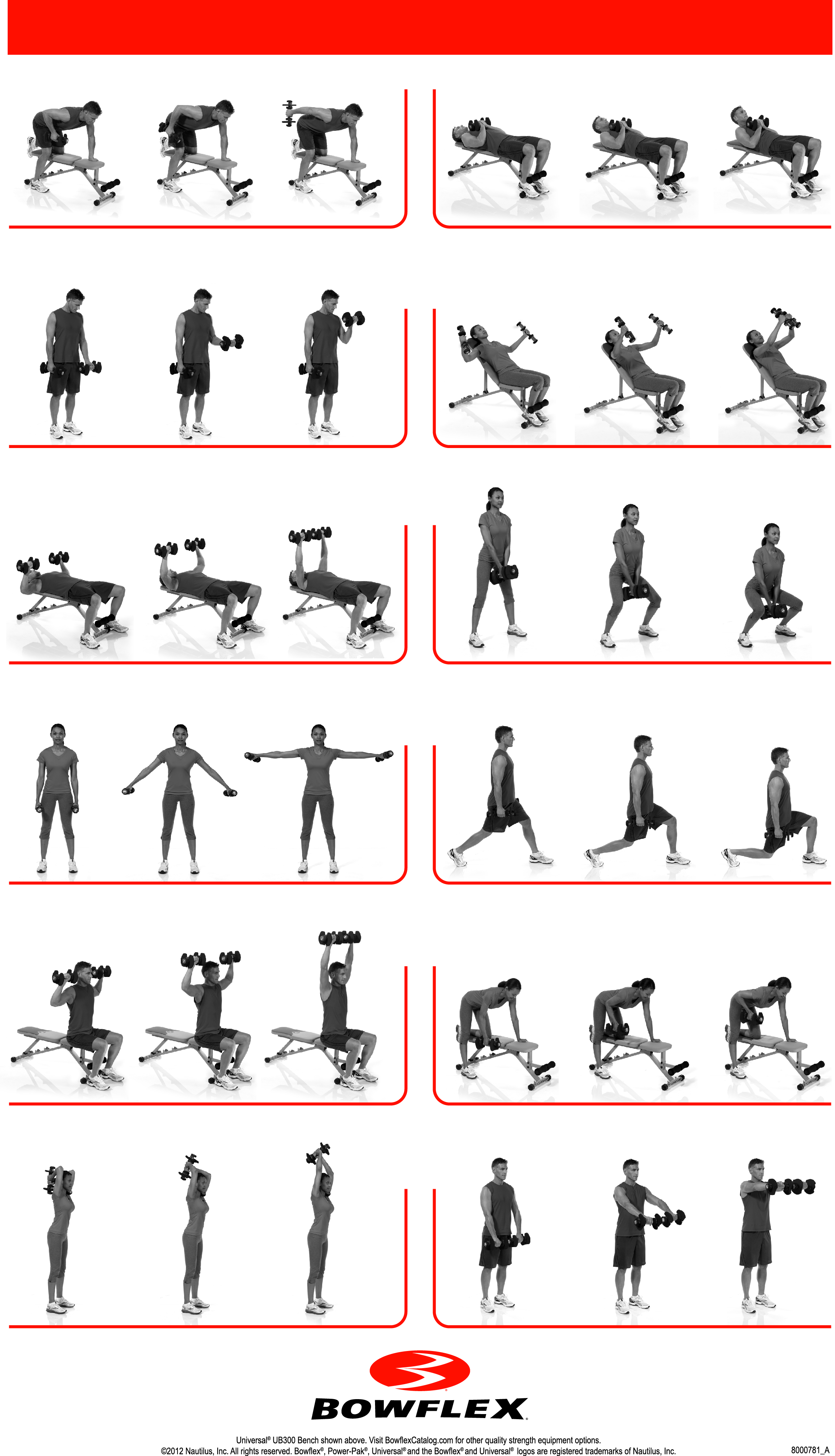 Weight Bench Routines